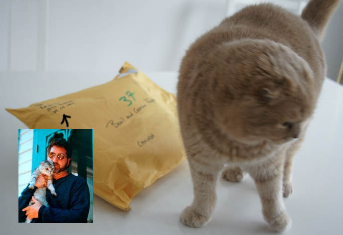 the cat who went to paris gethers peter
