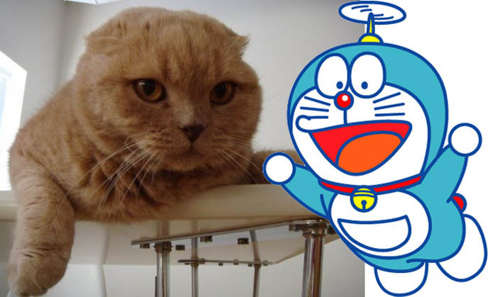 Doraemon, cute Japanese earless blue cat. Japan anime and tourism ambassador, TV character.
