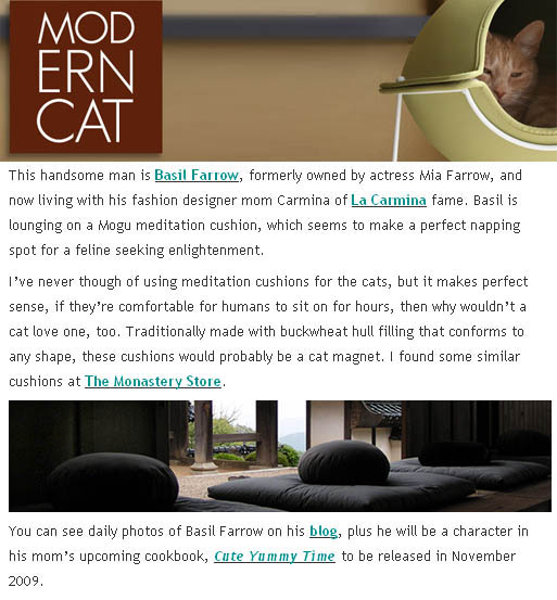 Buy modern designer furniture for pets, cat chair and meditation cushion, Mia Farrow Scottish Fold famous cat, animal home decor photos.