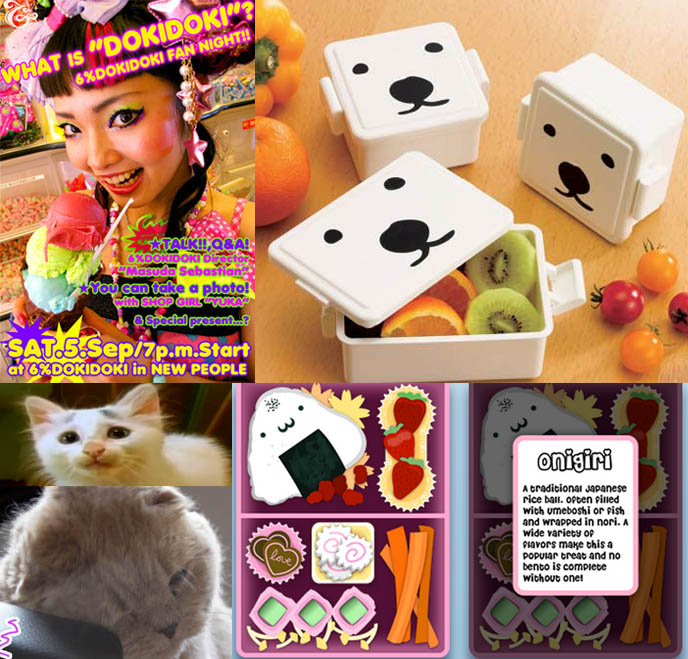 6% DokiDoki New People World fairy kei decora fashion event, polar bear face bento boxes, cute lunch kits, Japanese youtube cat kitten with eyebrows, obento iphone app, onigiri cute sushi graphic.