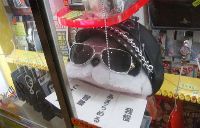 Visual Kei music stores in Harajuku, J-rock and J pop idol photos, memorabilia in Tokyo japan, Visual kei hide, X Japan, Gackt merchandise, cds and souvenirs, rare vinyl, Nightmare Japanese band