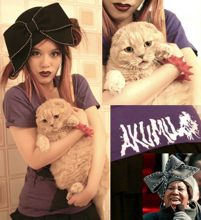 scottish fold cat, cute silly kitten face, Aretha Franklin crazy hat, where to buy hat Aretha Franklin wore to Obama inaugural ceremonies, big silly giant hat with bow on it, cosplay anime hairstyles, Goth fetish makeup, SuicideGirls model, Akumu Ink gothic steampunk t-shirts, nightmare before christmas character and skull graphic design, light pink dyed hair, emo girl, dark red lipstick gothic, high exposure fashion modelling photos, La Carmina makeup and clothing line, two tone black lipstick, Aromaleigh mineral eyeshadows