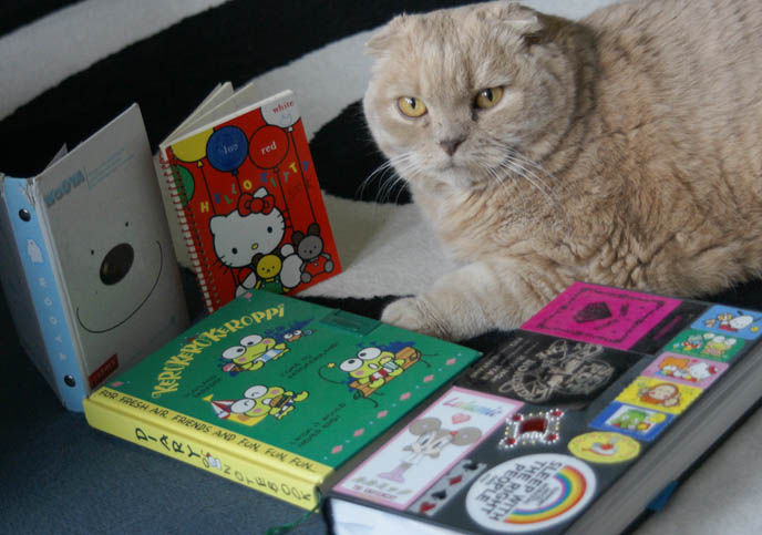 sanrio diary, hello kitty notebook, keroppi journal, CUTE JAPANESE STATIONERY, PENS, DIY WRAPPED PAPER BOOK COVERS. MIYAVI & VERSAILLES J-ROCK CONCERT IMAGES, visual kei bands performance photos, scottish fold cat, fat yellow pet kitten with yellow eyes, cutest cat Japan, wrapped textbooks, cool book protective covers