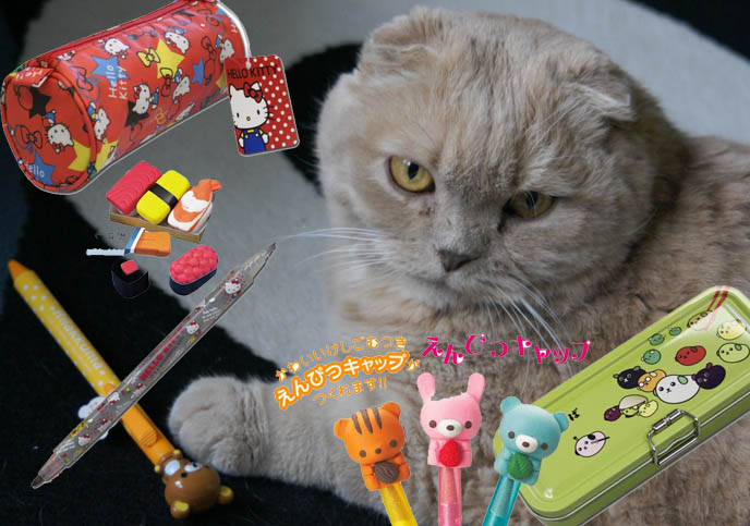 hello kitty pencil case, rilakkuma pen, cute animal erasers, sanrio diary, hello kitty notebook, keroppi journal, CUTE JAPANESE STATIONERY, PENS, DIY WRAPPED PAPER BOOK COVERS. MIYAVI & VERSAILLES J-ROCK CONCERT IMAGES, visual kei bands performance photos, scottish fold cat, fat yellow pet kitten with yellow eyes, cutest cat Japan, wrapped textbooks, cool book protective covers