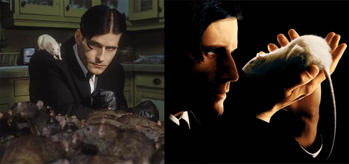 INTERVIEW WITH CRISPIN GLOVER: ACTOR, DIRECTOR. TOUR DATES: WHAT IS IT, IT IS FINE, EVERYTHING IS FINE, BIG SLIDE SHOW, knave of hearts in alice in wonderland, friday the 13th part 4, creepy actor, goth eccentric character, thin man charlie's angels, back to the future, crispin hellion glover, willard, tickets for screenings vancouver canada